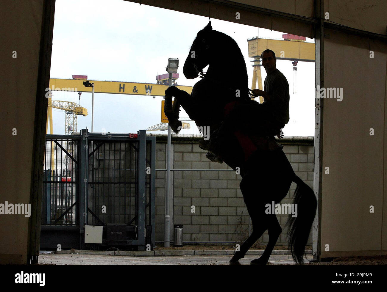 Rehearsal ahead of Northern Ireland International Horse Show - Stock Image