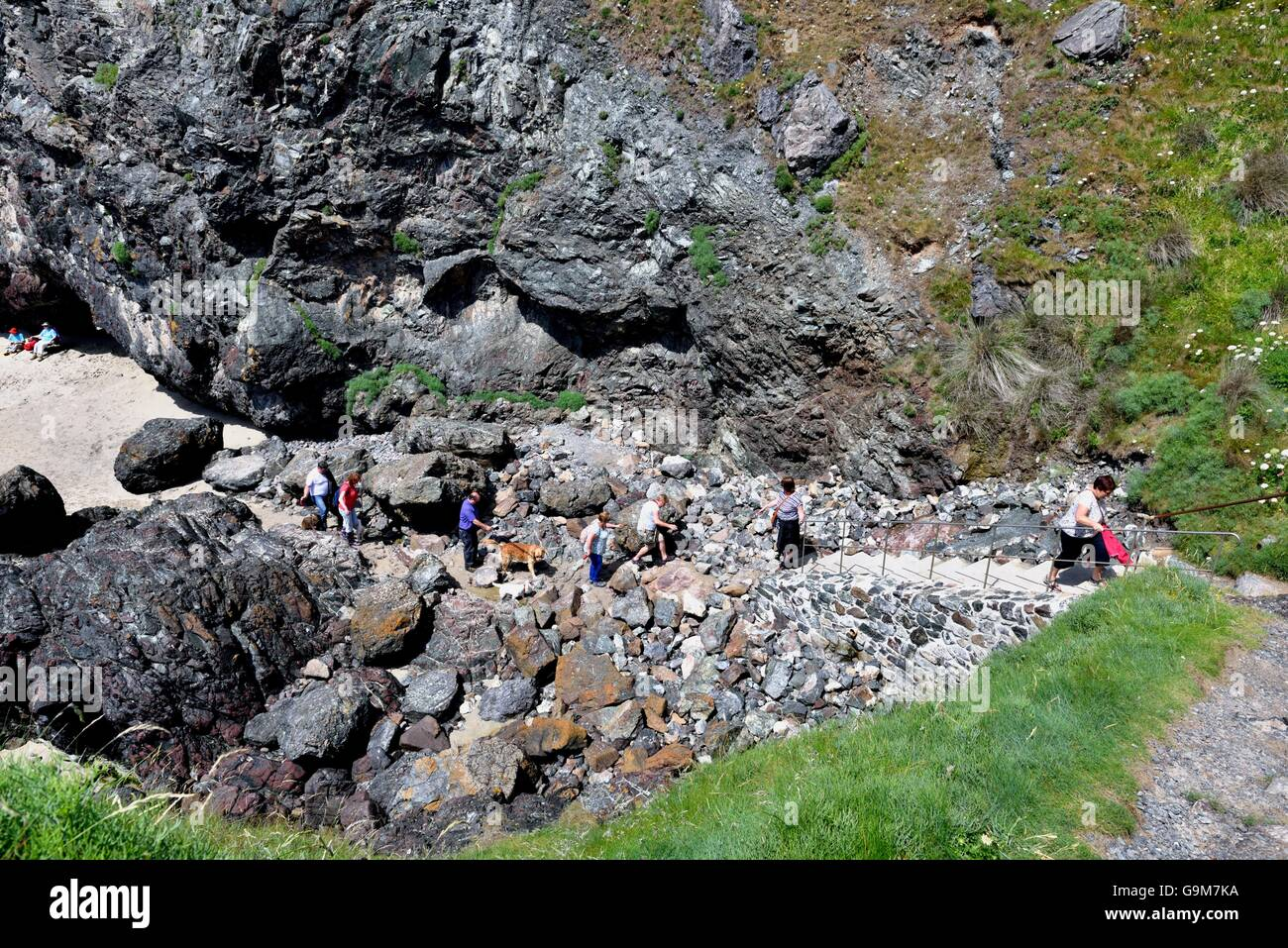 People climbing up the path from Kynance cove beach Cornwall England UK - Stock Image