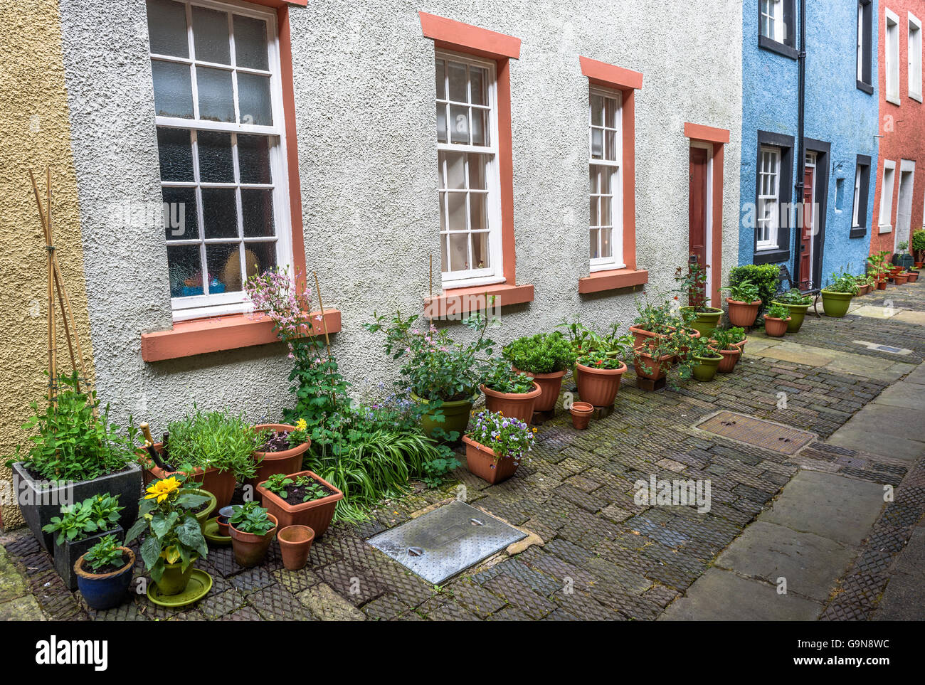 View of old Terraced Cottages and potted plants and vegetables. Stock Photo