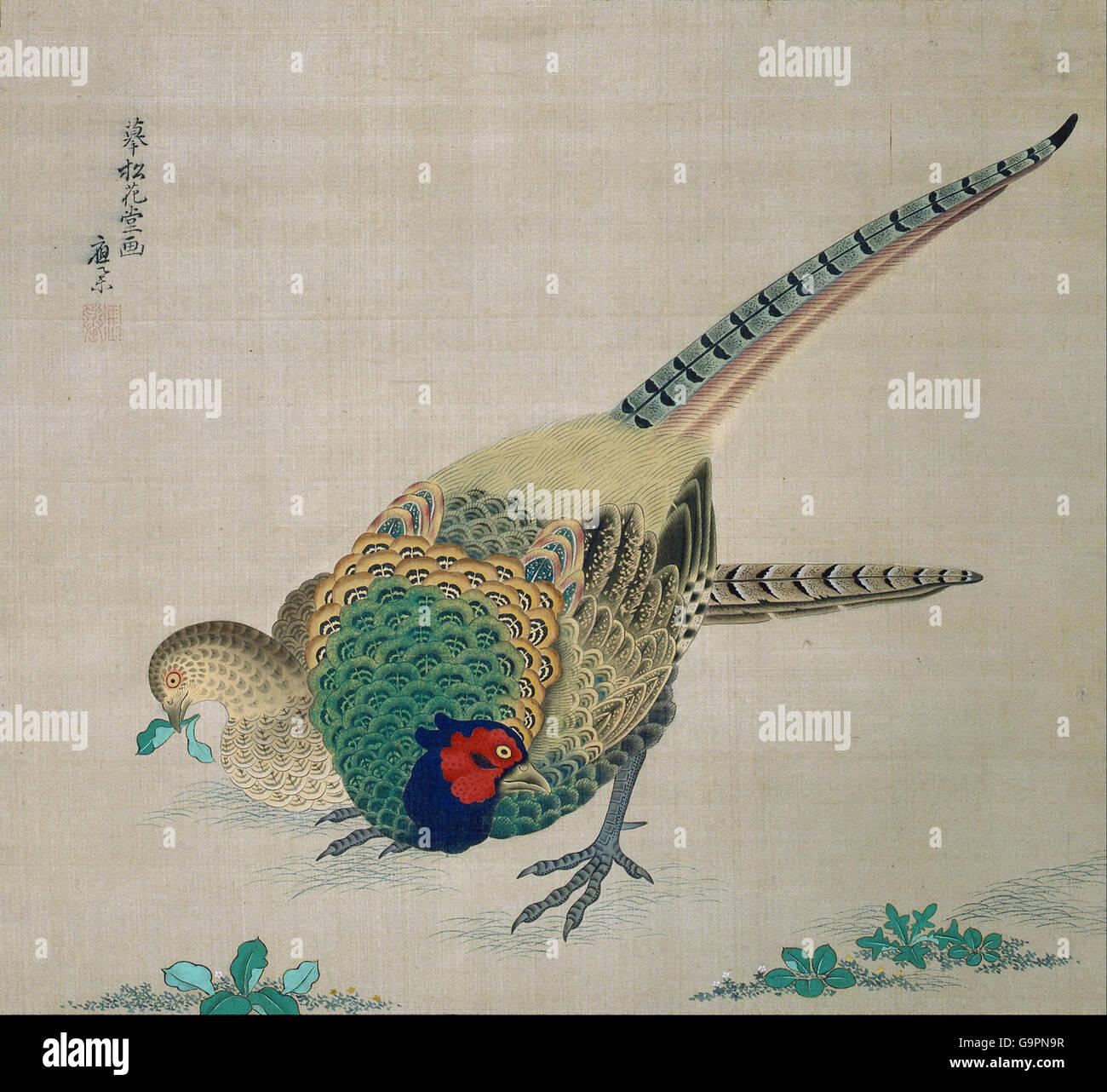 Maruyama Okyo - Hanging Scroll (pair of pheasants) - Stock Image