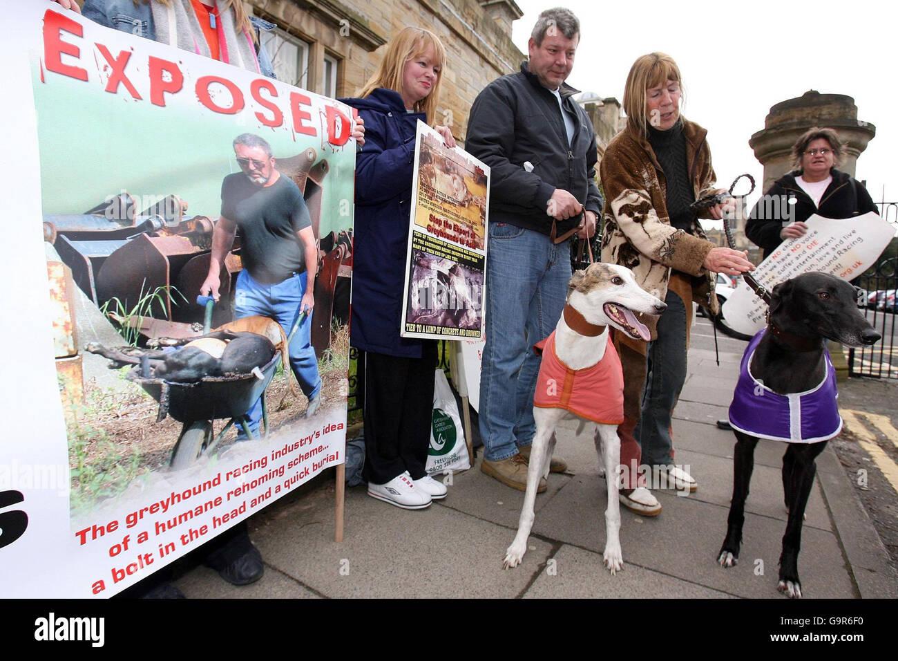 Greyhound killer in court - Stock Image
