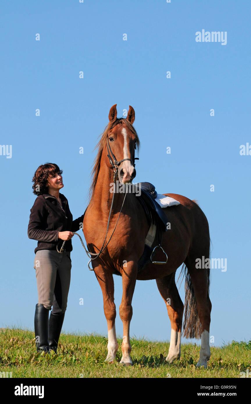 Black leather saddle stock image. Image of rider, american
