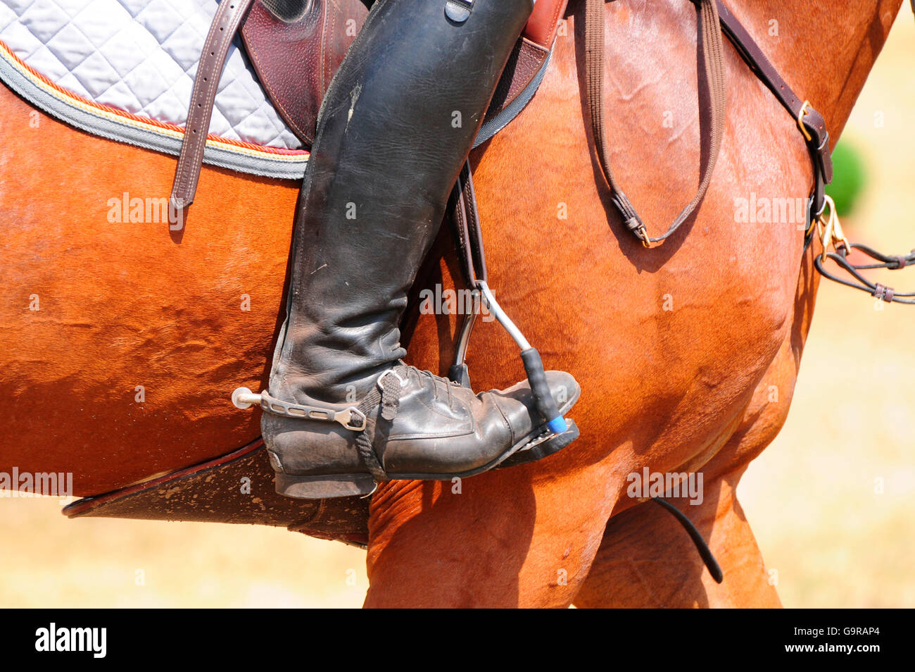 Equestrian Sports, riding boots, spurs, gear, tack - Stock Image