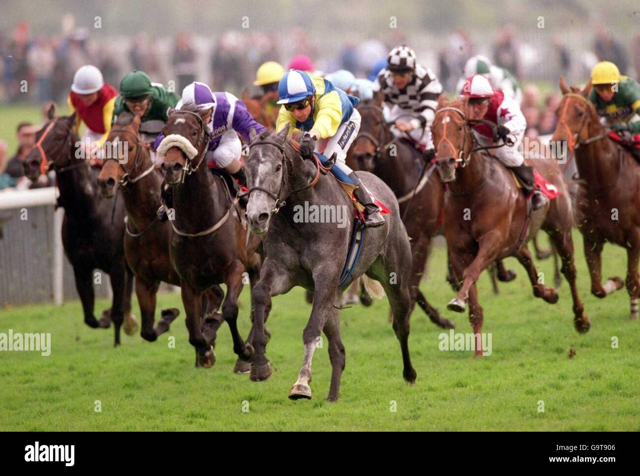 Horse Racing - York Races - Stock Image