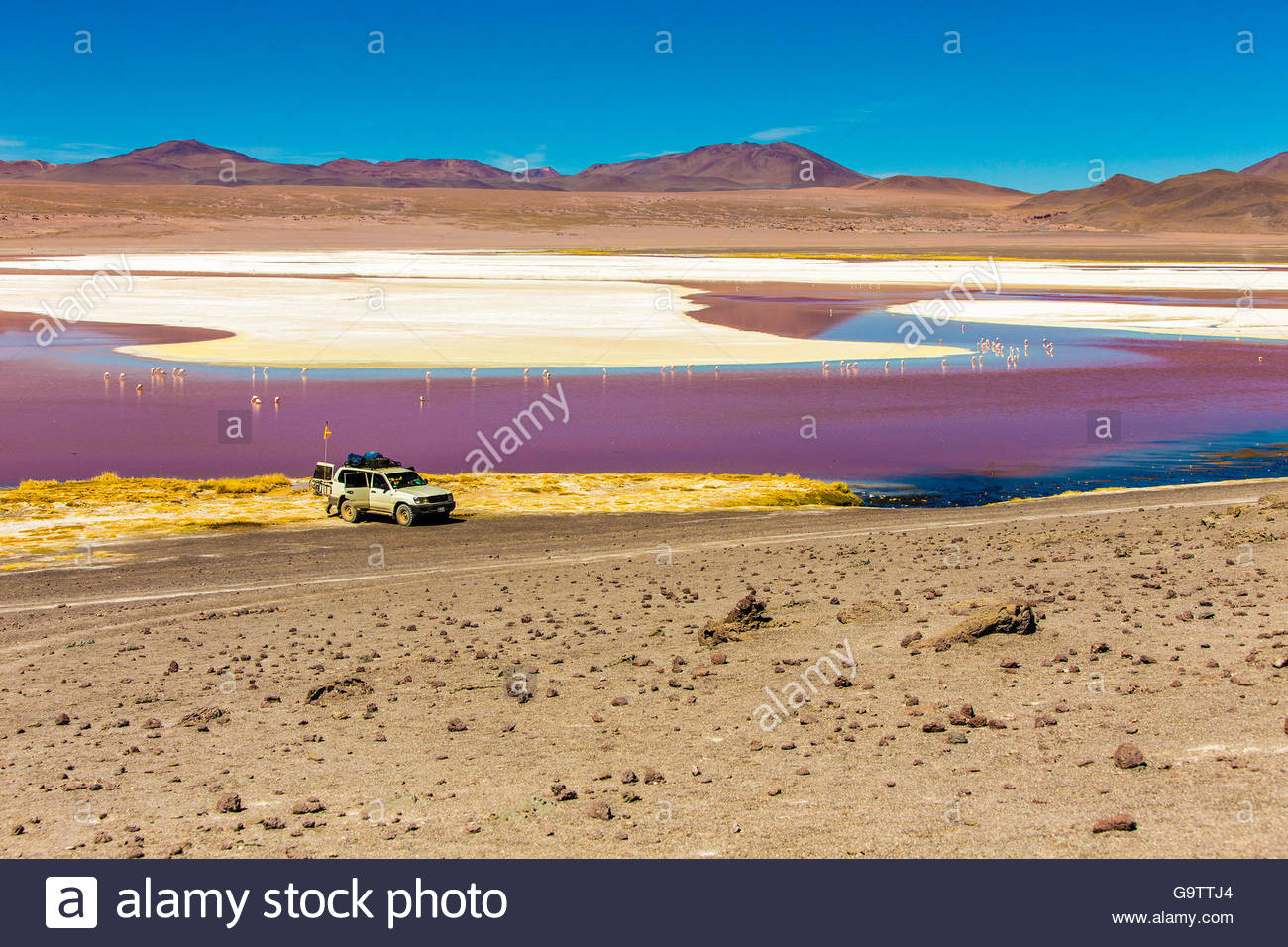 Laguna in the desert in Bolivia - Stock Image