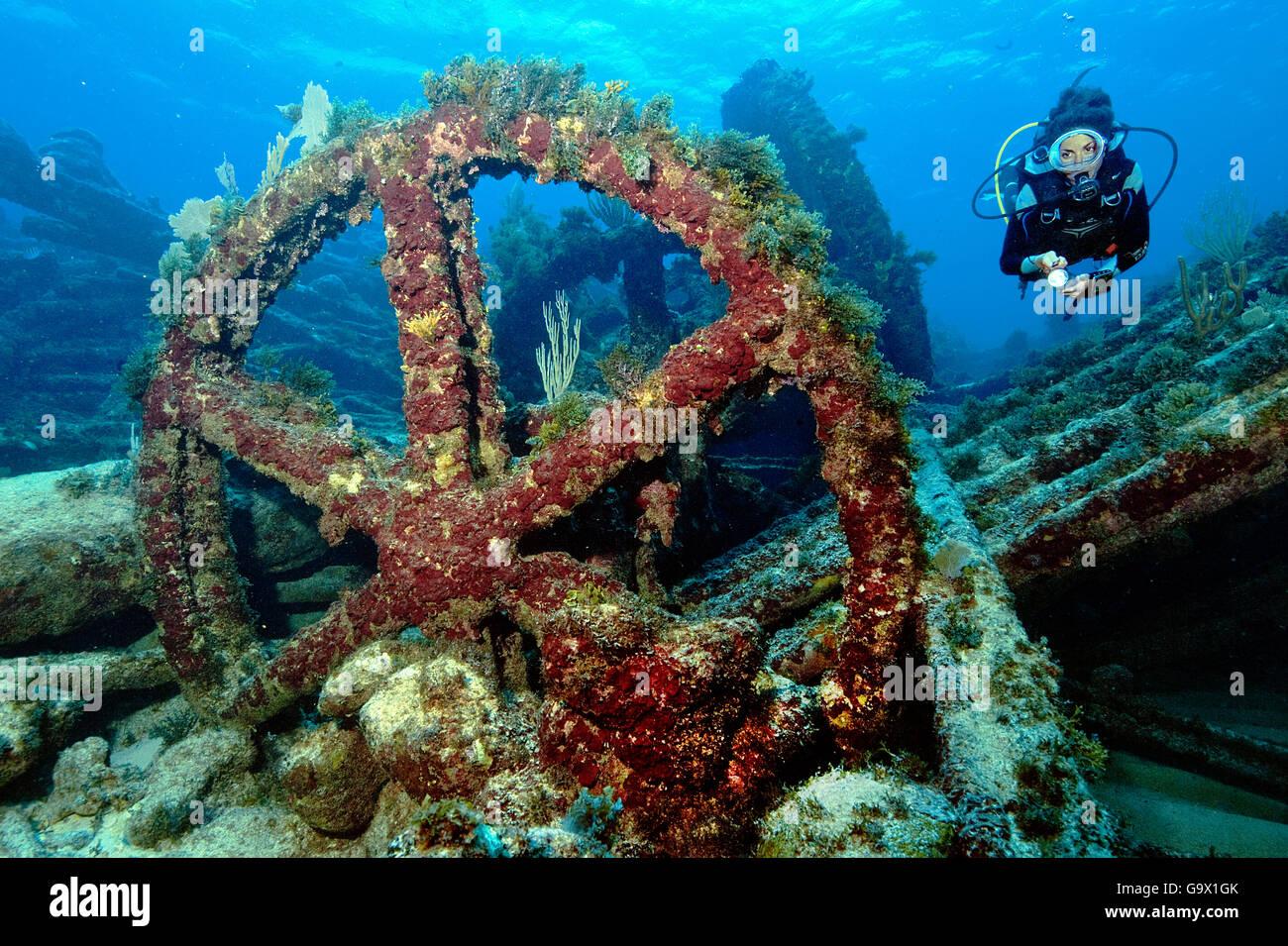 Fiver at wreck with big steel wheel, wreck Monica, Punta Cana, Dominican Republic, Hispaniola, America, Caribbean - Stock Image