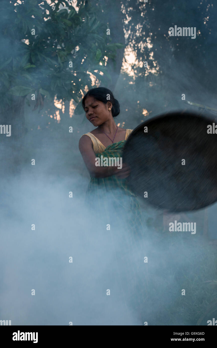 Mising tribe woman using smoke to drive away mosquitoes away from cattle, Majuli Island, Brahmaputra River, Assam, - Stock Image