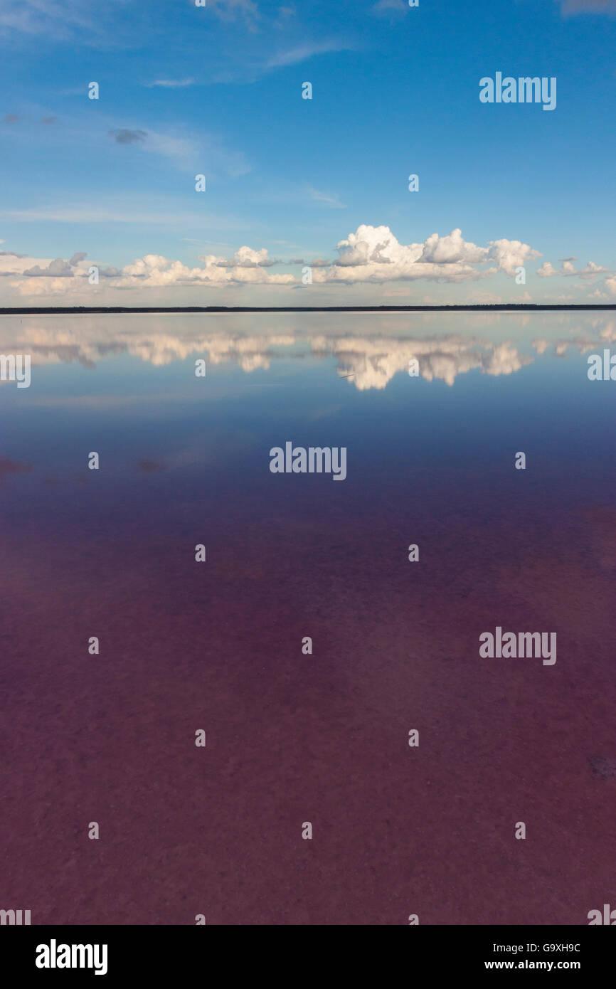 Salt lake, pink in colour due to bacteria (Dunaliella salina) Salinas Grandes de Hidalgo, La Pampa, Argentina - Stock Image