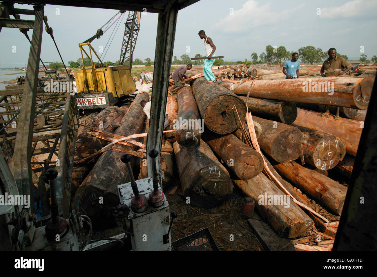 Illegal logged timber, Kinshasha, Democratic Republic of the Congo. Non-ex - Stock Image