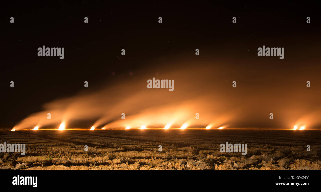 Burning of rice field after harvest, Camargue, France, October. - Stock Image