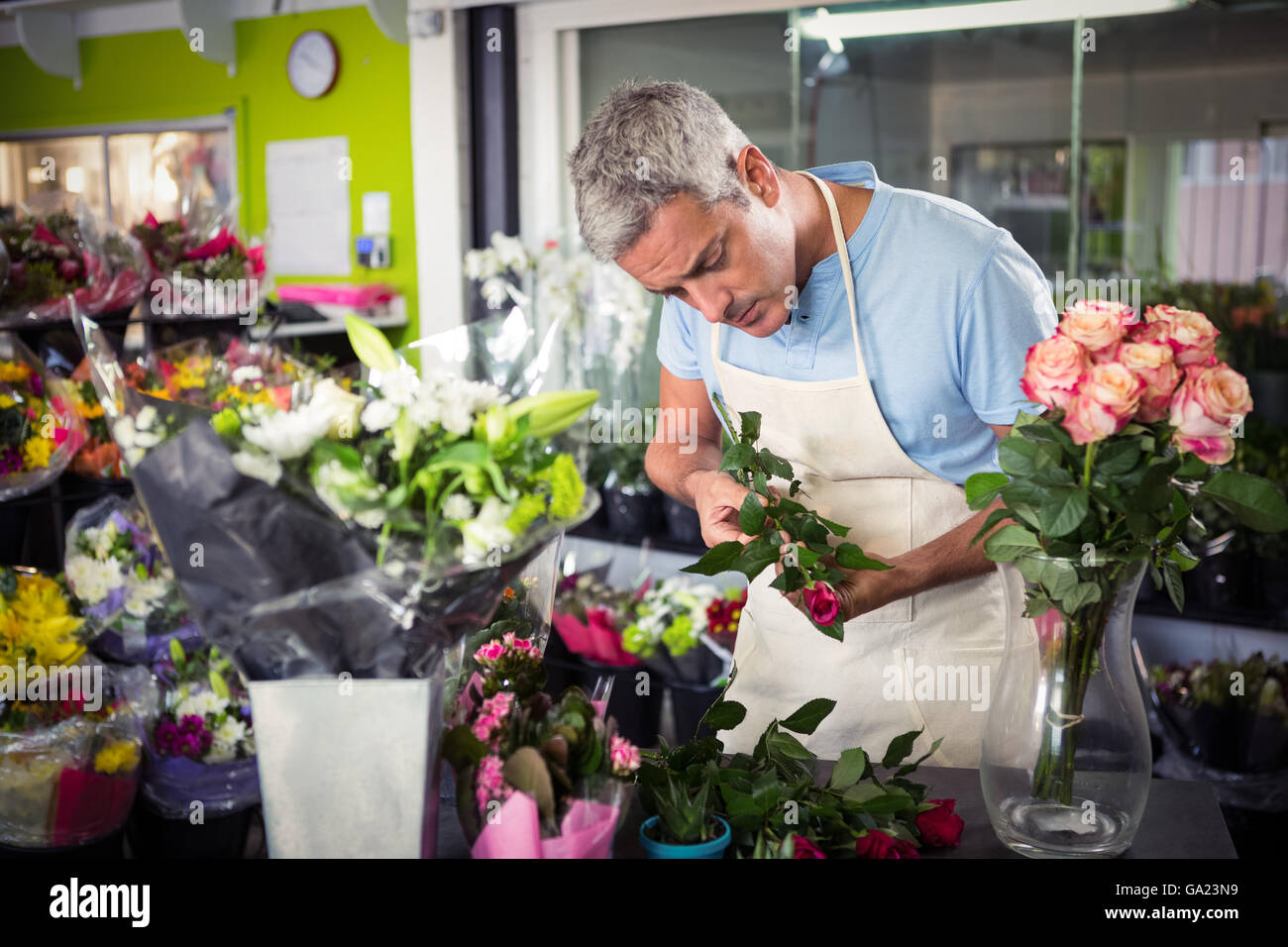 Male florist arranging flowers - Stock Image