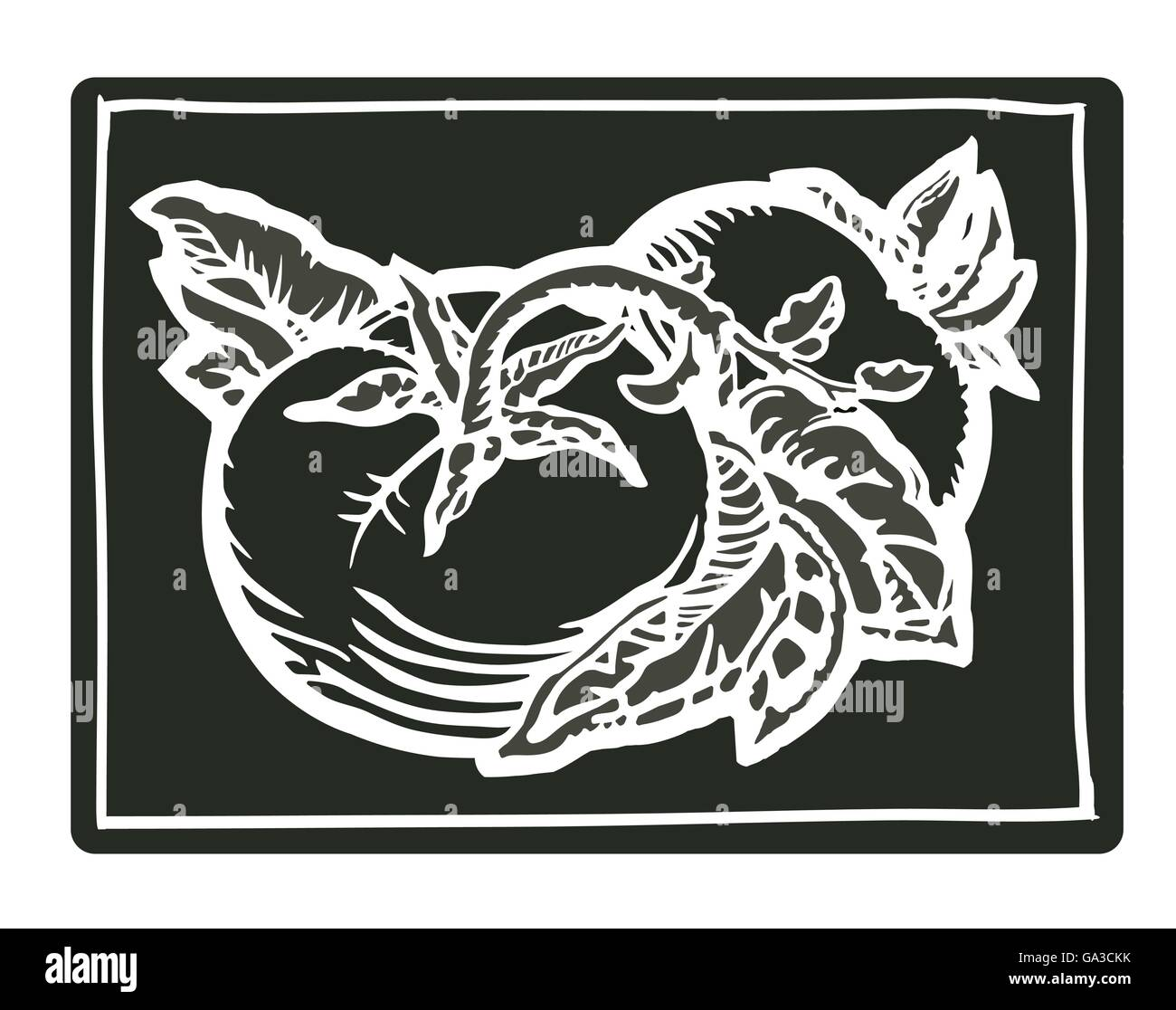 Couple of tomatoes in black woodcut print style - Stock Image
