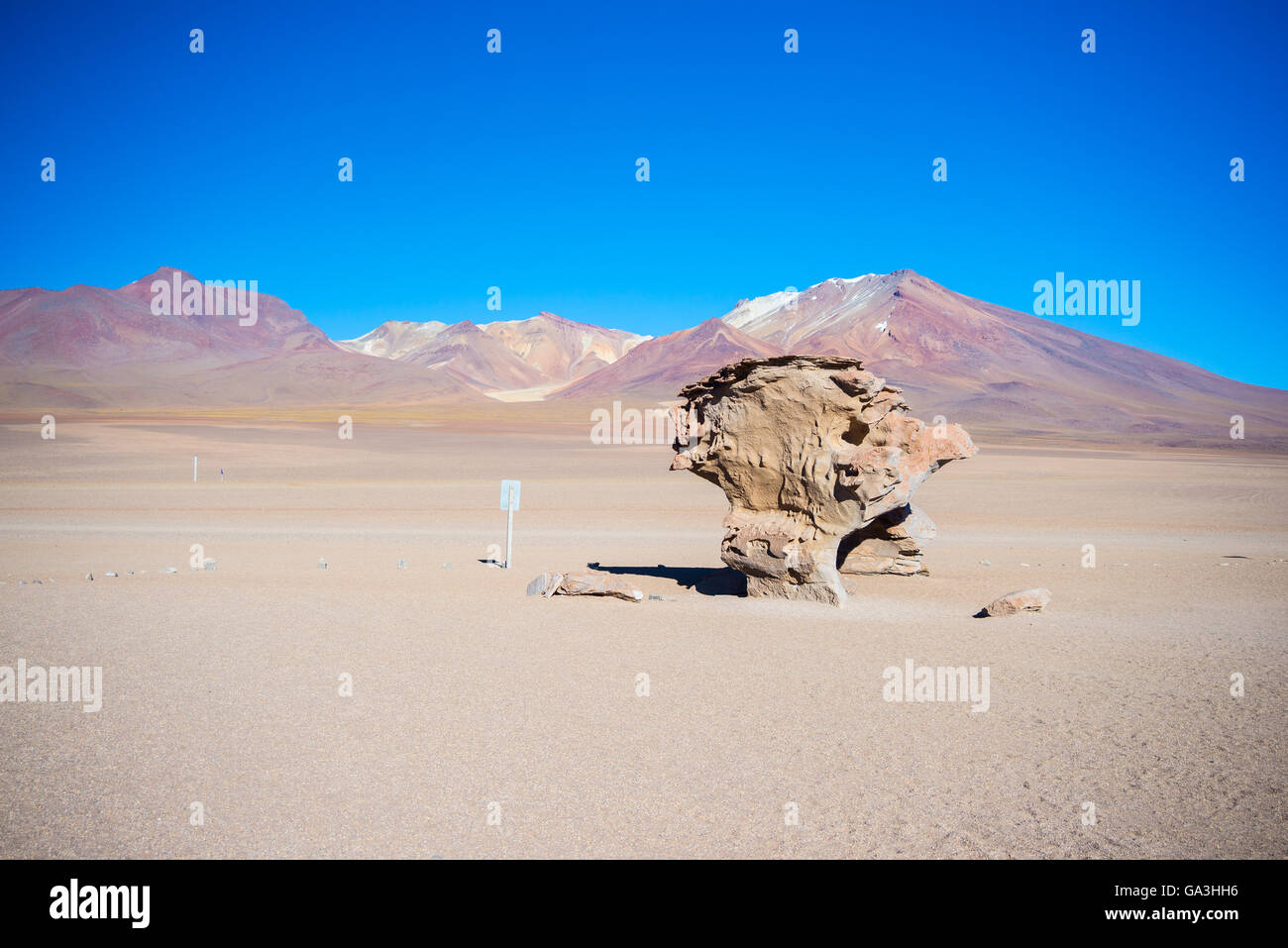 Sandy desert and scenic rock formation, known as 'Rock Tree', on the Andean highlands. Road trip to the - Stock Image
