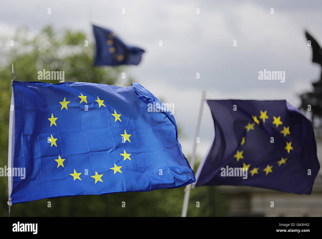 European Union flags fly above the March for Europe rally from Park Lane to Parliament Square in London to show - Stock Image