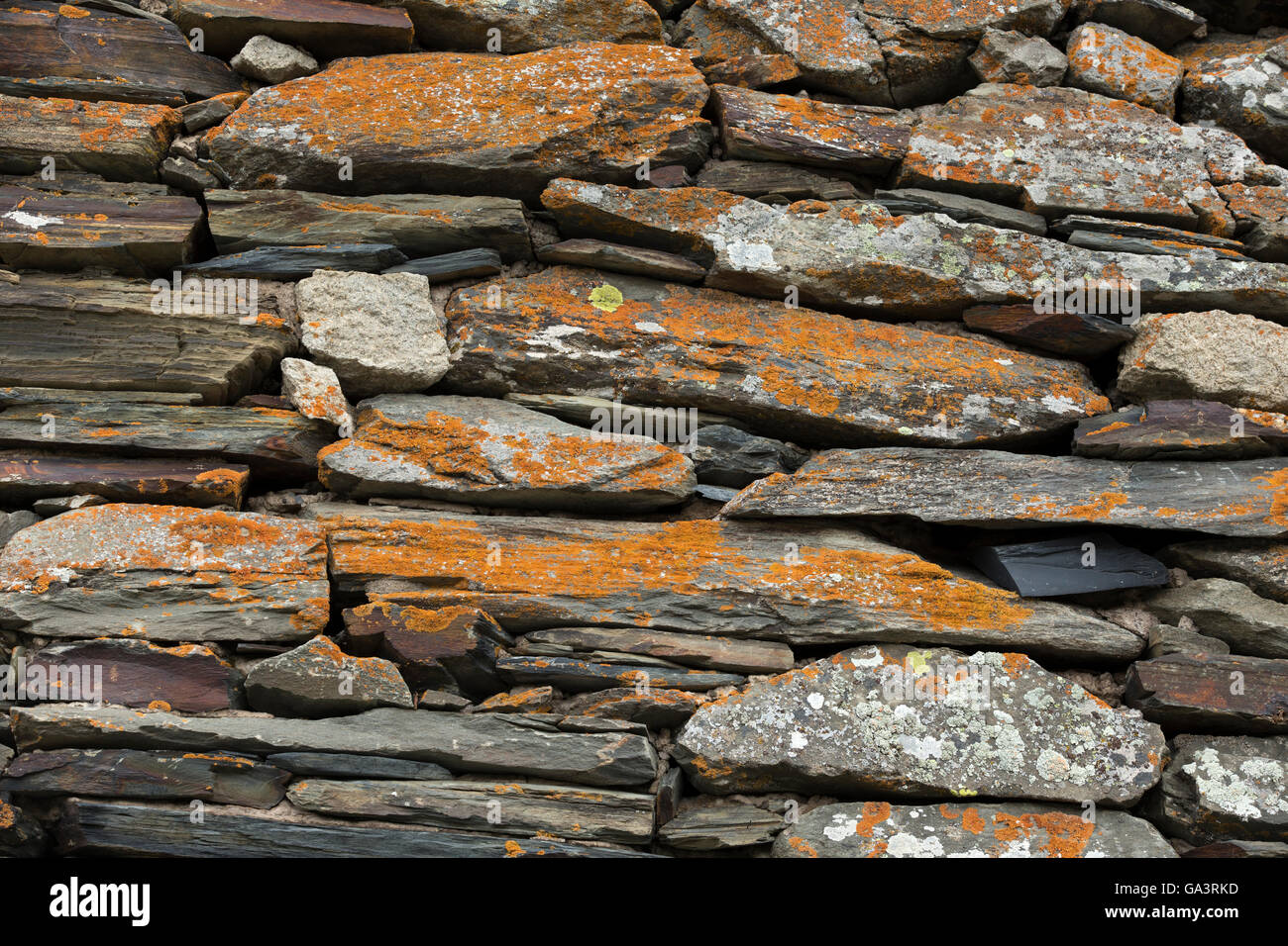 Wall composed of different pieces of basalt covered with lichens - Stock Image