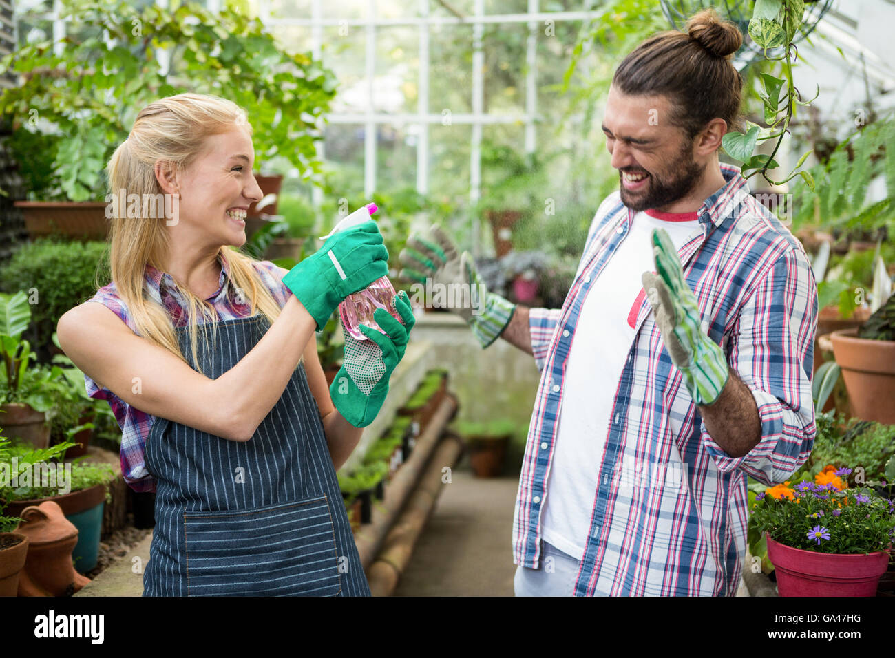 Cheerful gardener spraying water on colleague at greenhouse - Stock Image