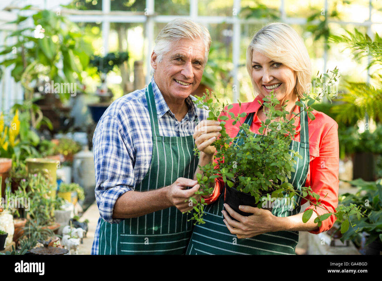 Happy couple holding potted plant in greenhouse - Stock Image