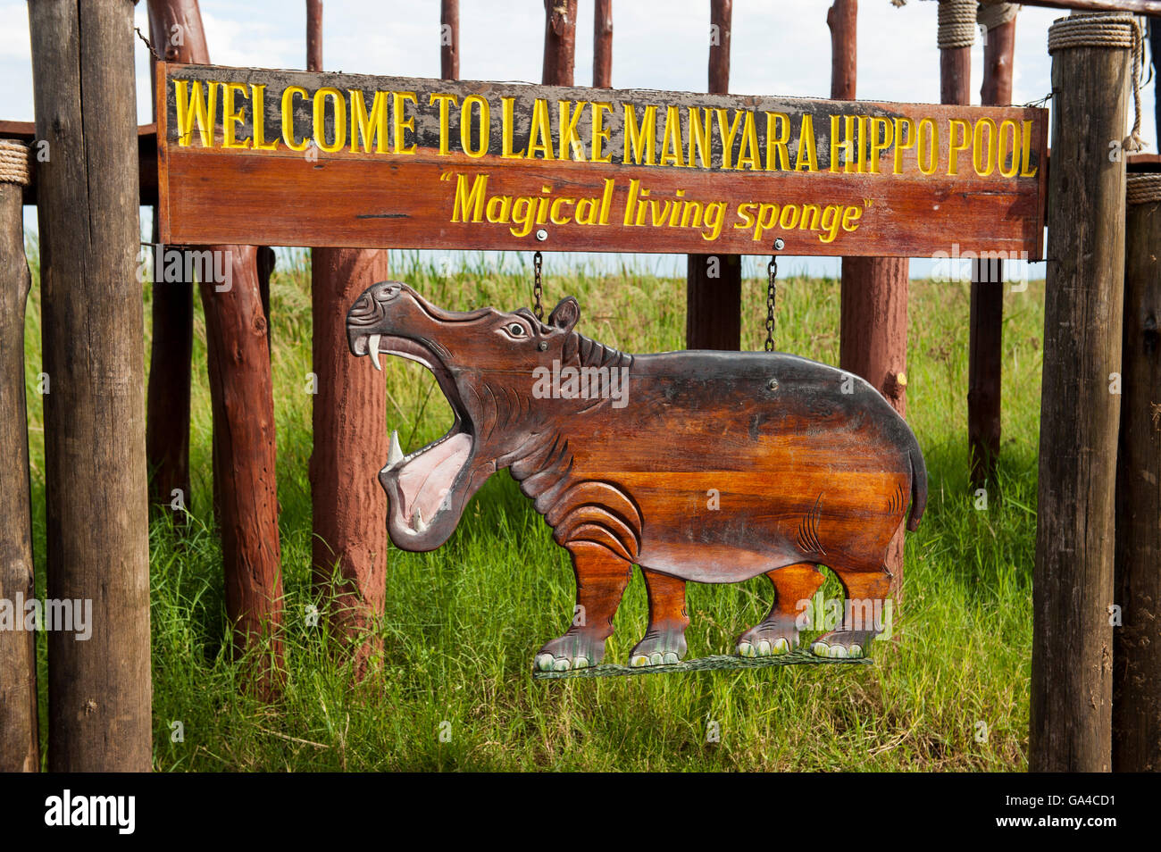 Hippo pool platform, Lake Manyara National Park, Tanzania - Stock Image