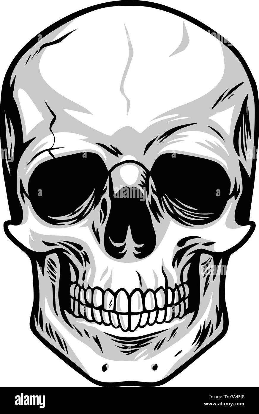 skull vector art illustrations stock vector art illustration rh alamy com free skull vector art skull vector free for commercial use