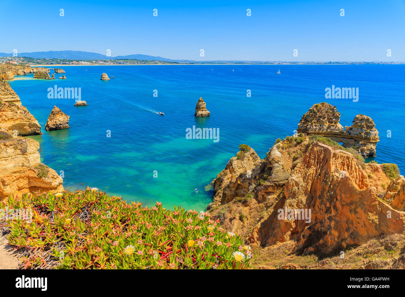 Flowers in spring time on cliff top and turquoise sea water at Ponta da Piedade, Algarve region, Portugal Stock Photo