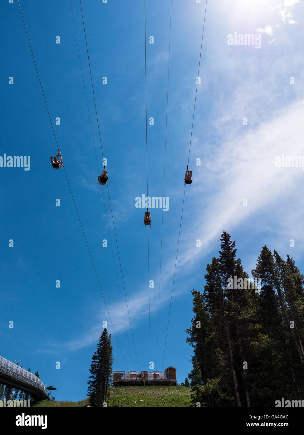 Golden Eagle Zipline, Epic Discovery center at Eagle's Nest, Vail Ski Resort, Vail, Colorado. - Stock Image