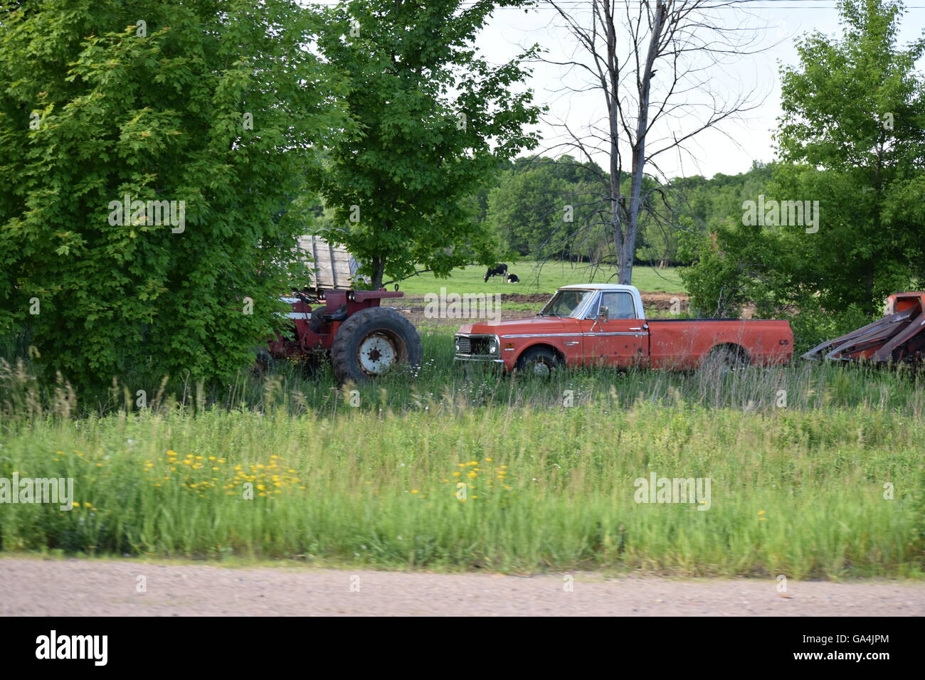Farm Equipment And An Old Chevy Truck In A Field With A Cow In The