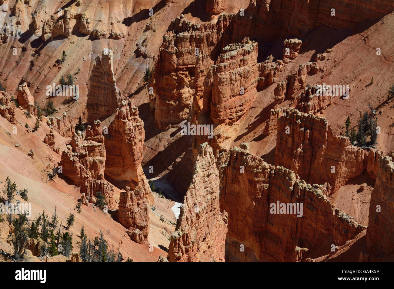 The beautiful but often ignored landscape of Cedar Breaks National Monument in Utah. - Stock Image