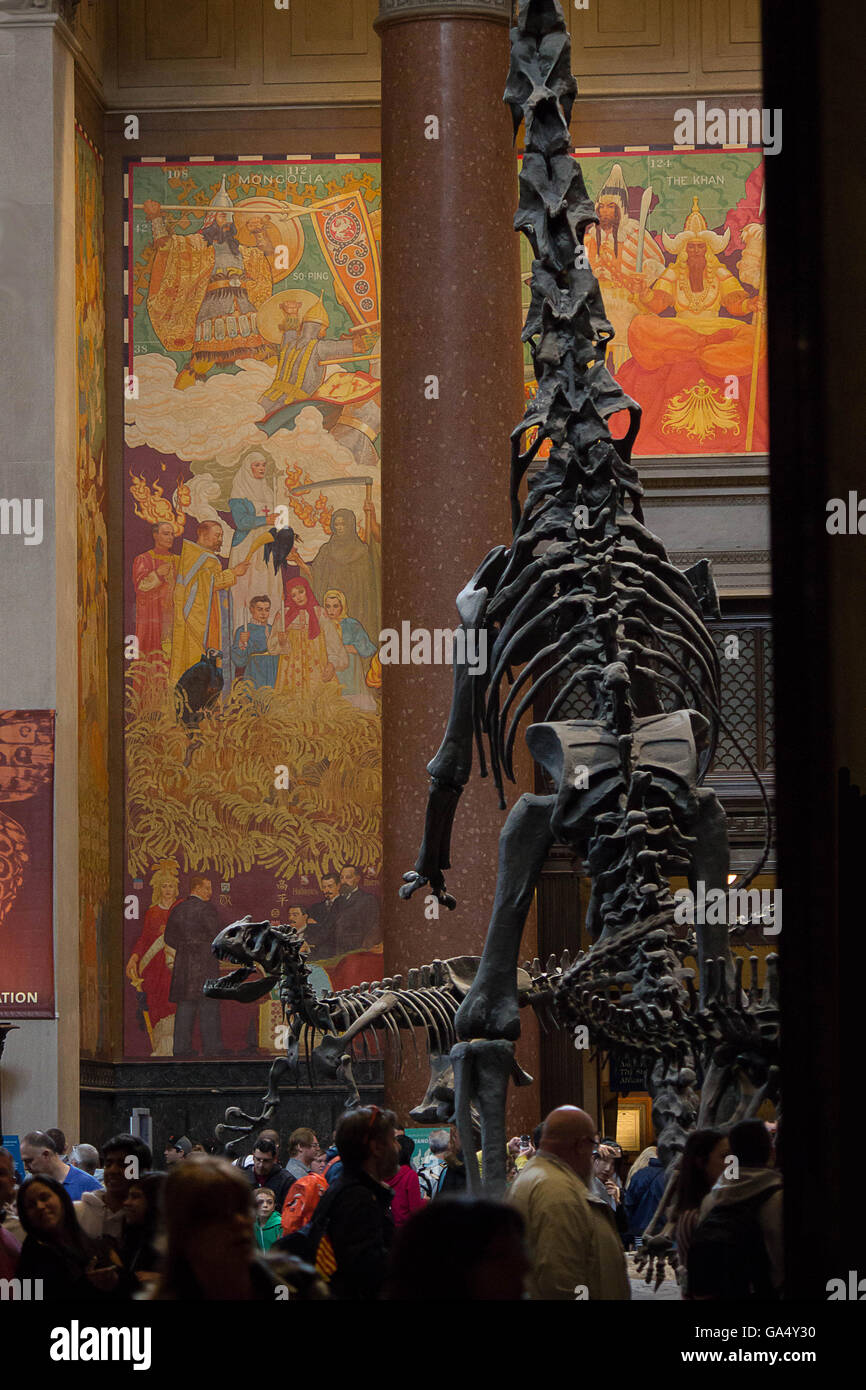 Dinosaur fossils at the entrance lobby to the Natural History Museum New York City - Stock Image