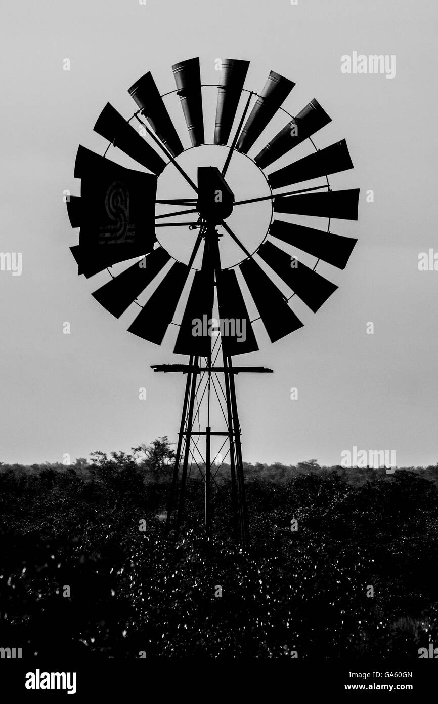 Old windmill black & white - Stock Image