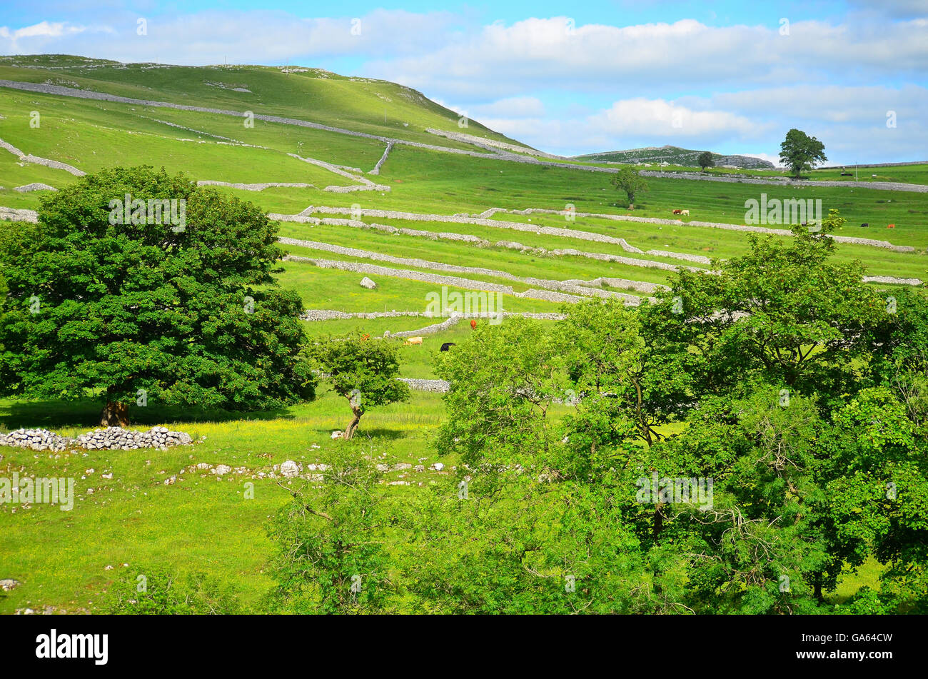 View from near the limestone pavement above Malham Cove, Yorkshire Dales National Park, near Settle, West Yorkshire Stock Photo