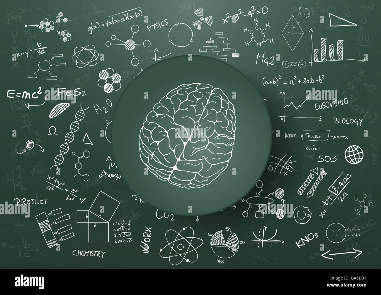 illustration of brain and science graphic on chalkboard stock vector