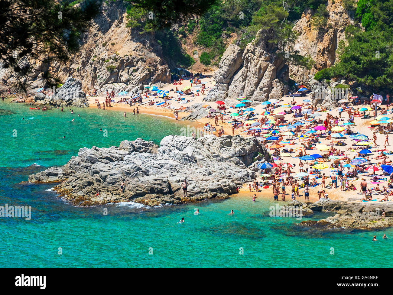 Naturist beach at Playa Cala Sa Boadella near Lloret de Mar, Costa Brava, Spain - Stock Image