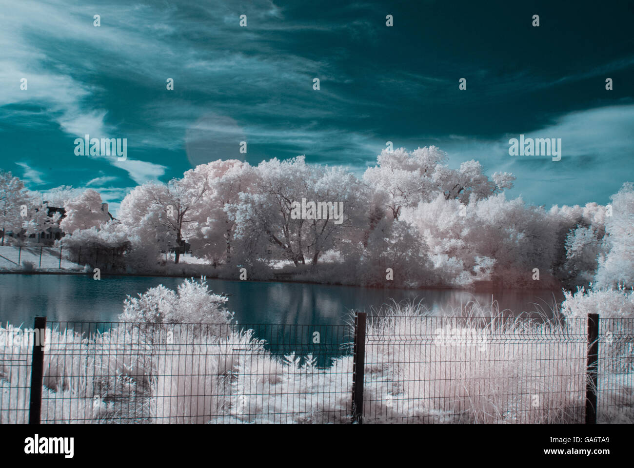 Infra Red photo of a pond / trees - Stock Image