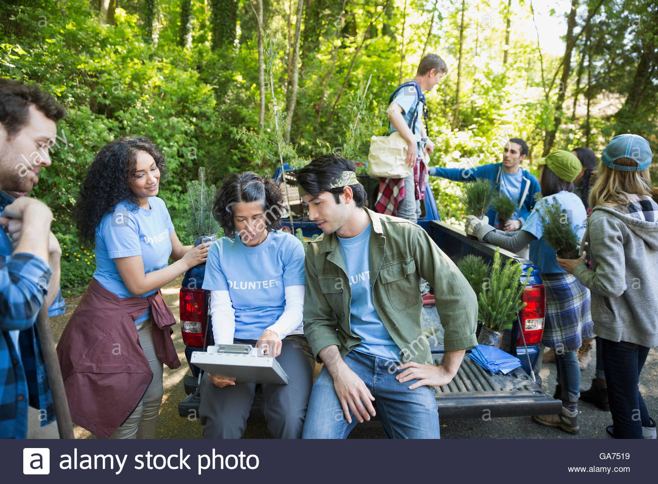 Woman guiding tree planting volunteers at truck - Stock Image