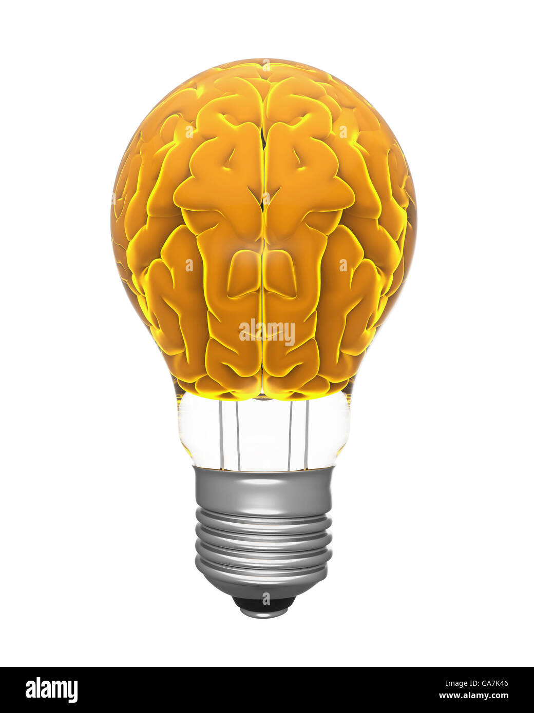 Light Bulb And Human Brain