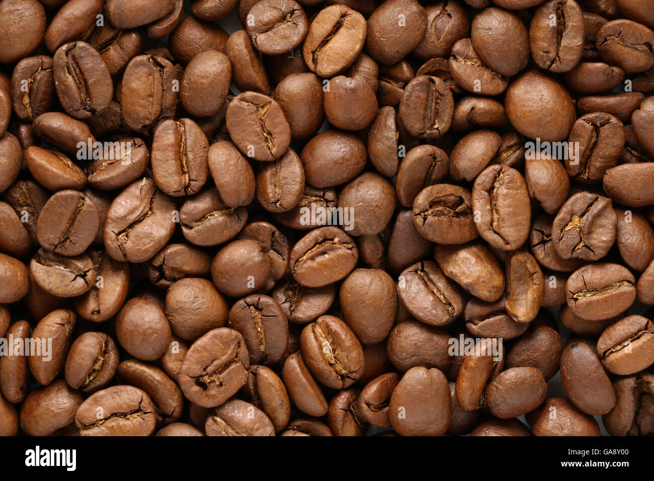 roasted coffee bean texture background - Stock Image