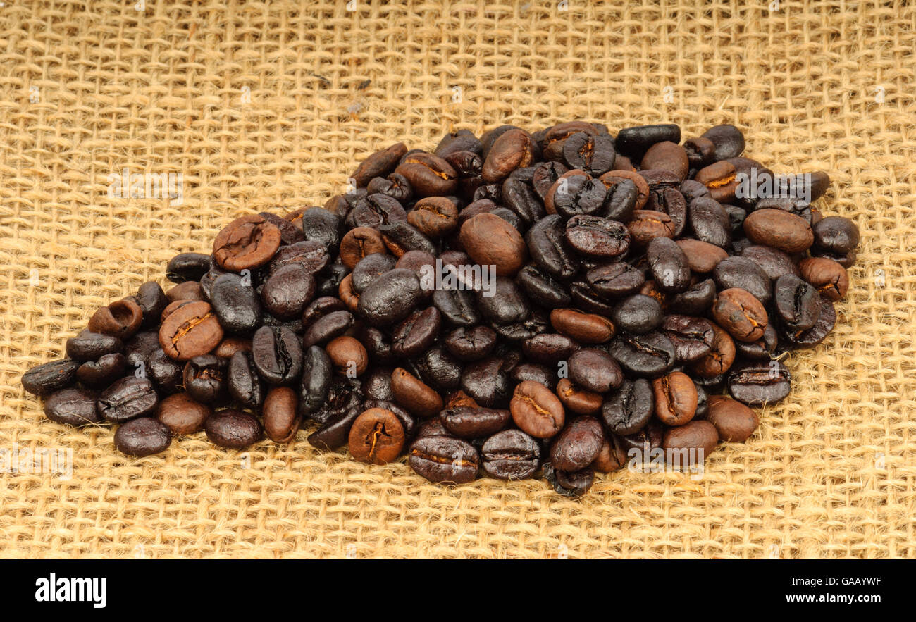 Roasted dark brown and light brown coffee beans on a jute bag - Stock Image