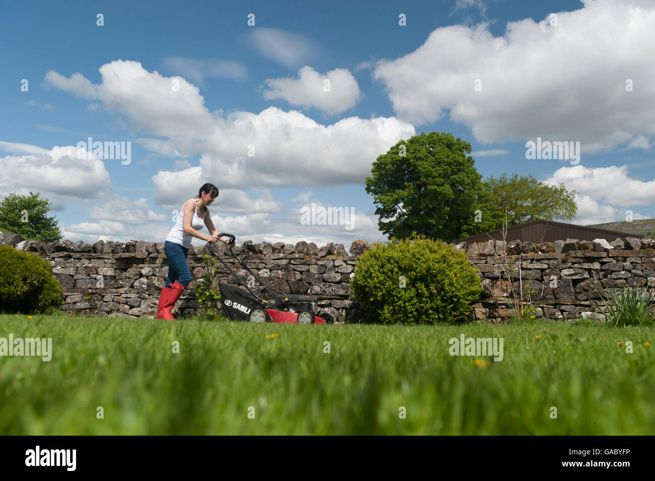 Lady mowing garden lawn with petrol powered mower. Hawes, North Yorkshire, UK. - Stock Image