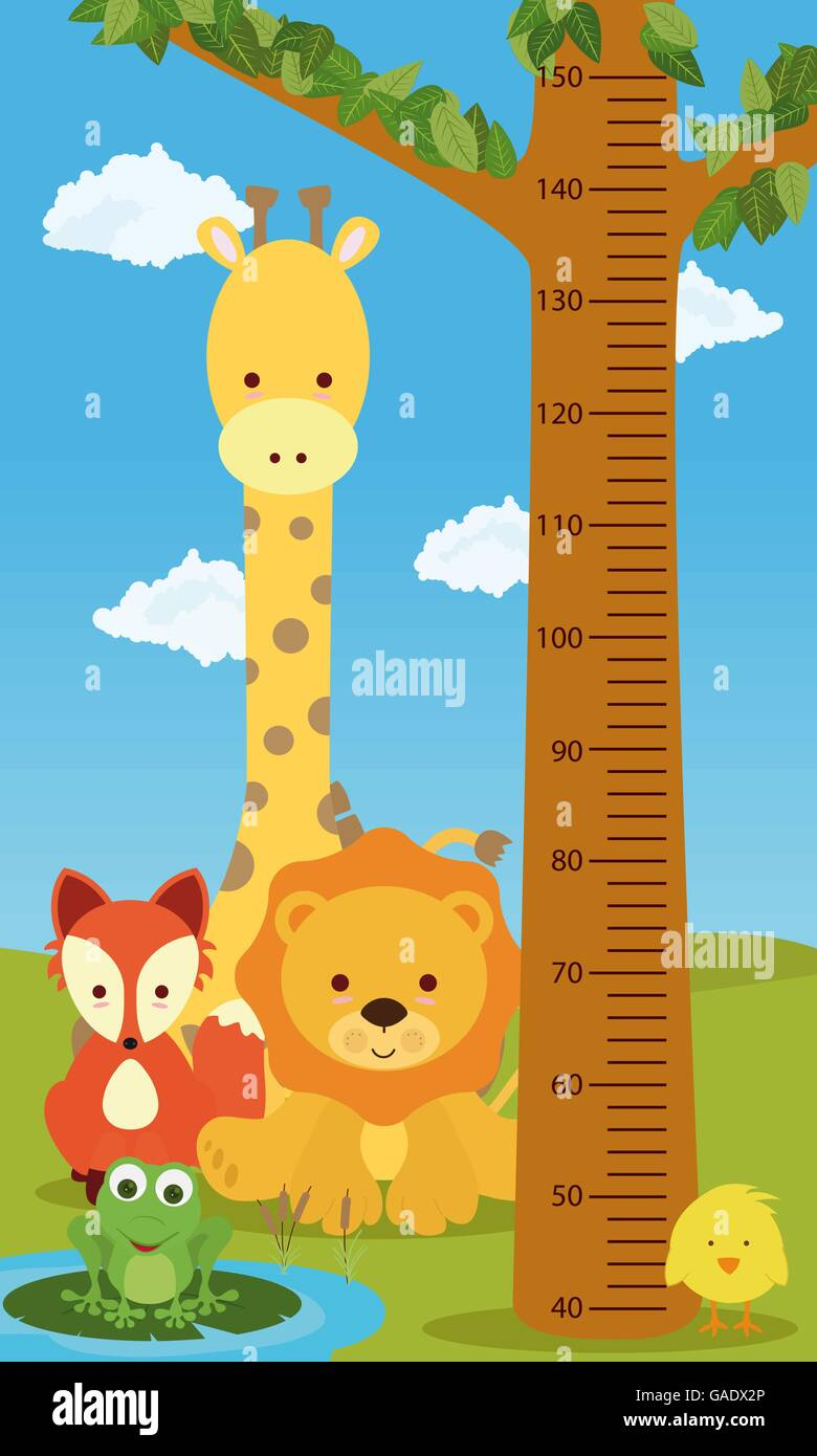 Height chart animals - Stock Vector
