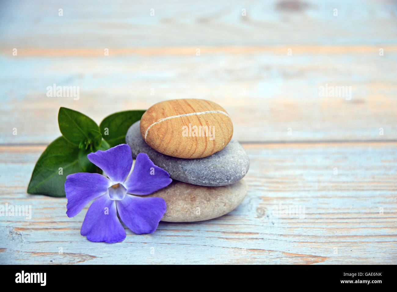 three zen cairn stones on a wooden background with a daisy and periwinkle - Stock Image