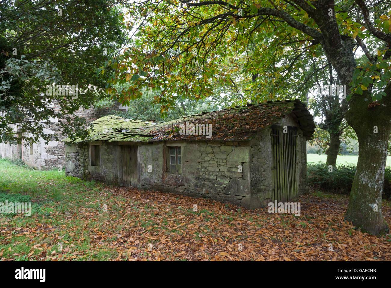 San Romao da Retorta, Spain: A ruined farmhouse in the village along the Camino Primitivo. - Stock Image