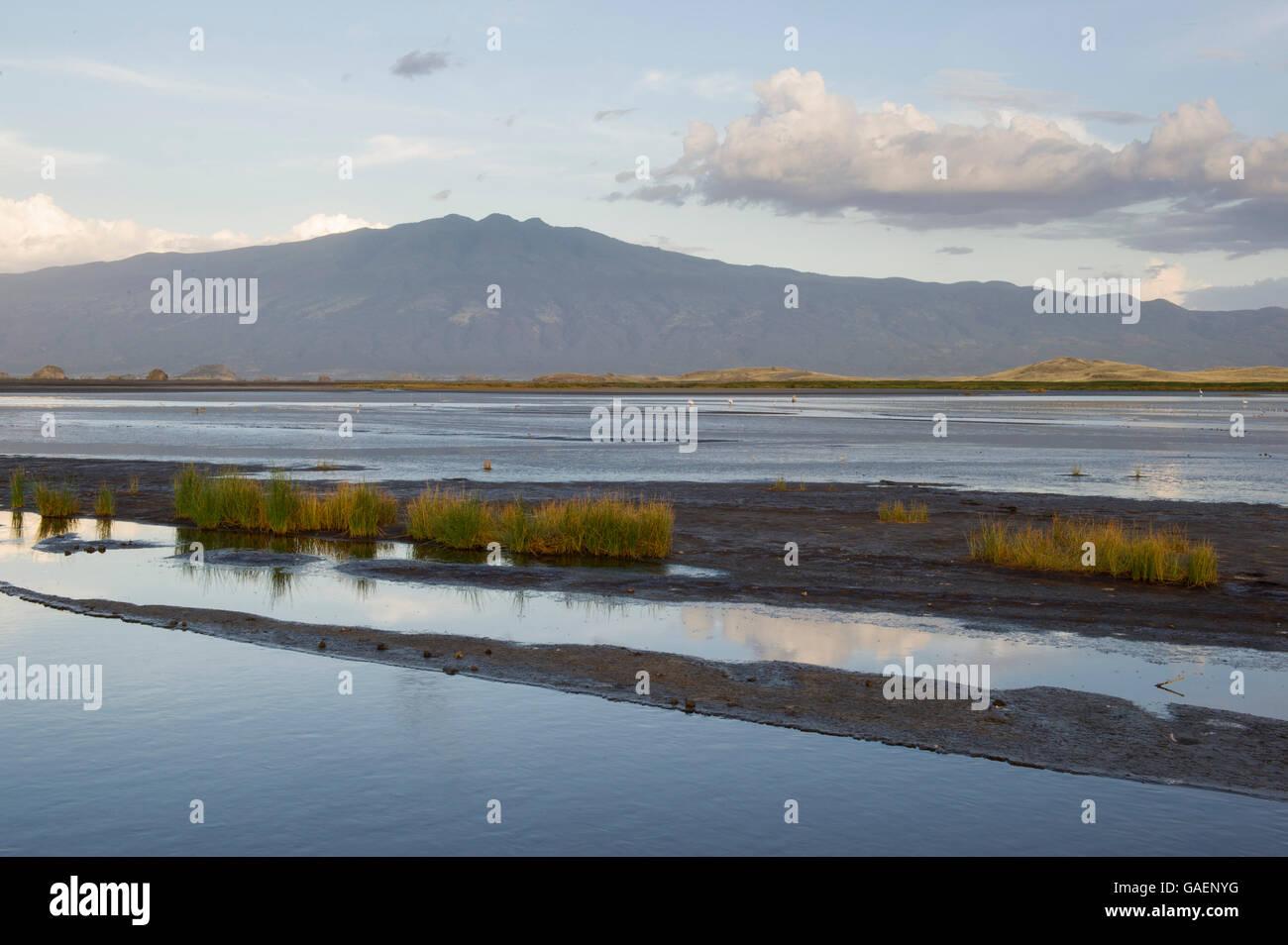Lake Natron, Tanzania - Stock Image