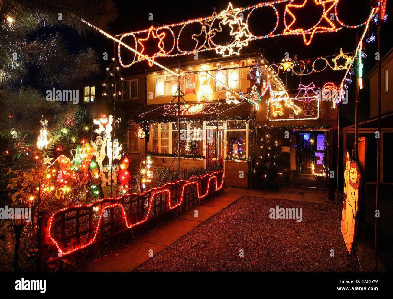 Enchanting Moody Garden Christmas Lights Vignette - Brown Nature ...