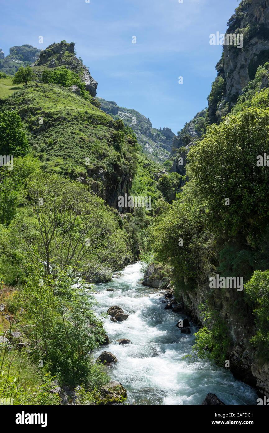 Spain, Leon, Picos de Europa, Cares valley river - Stock Image