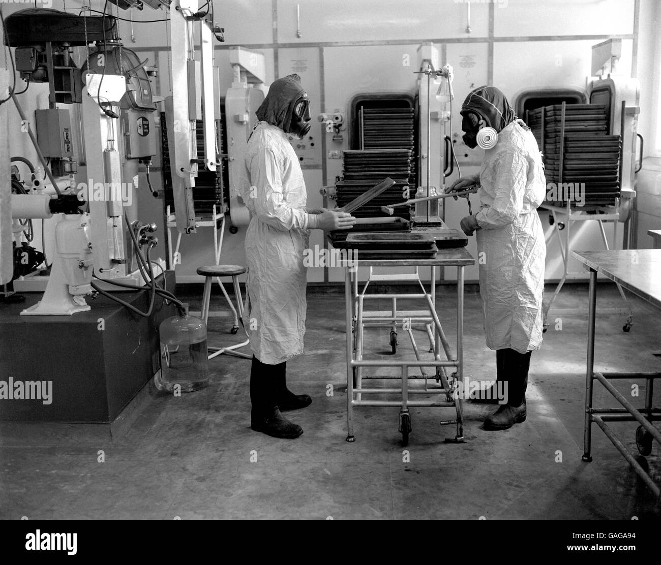 Fully protected by masks, gloves, overalls & rubber boots, scientists carry out experimental work for an improved - Stock Image