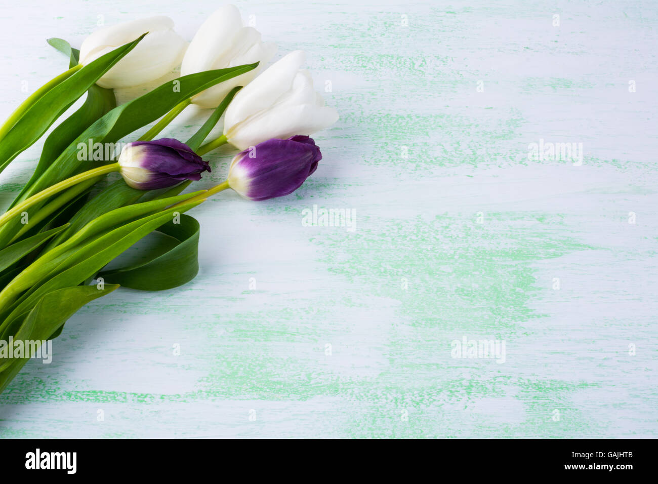 Tulips Floral Background Flower Frame Bouquet Greeting Card Mothers Day Flowers Pattern