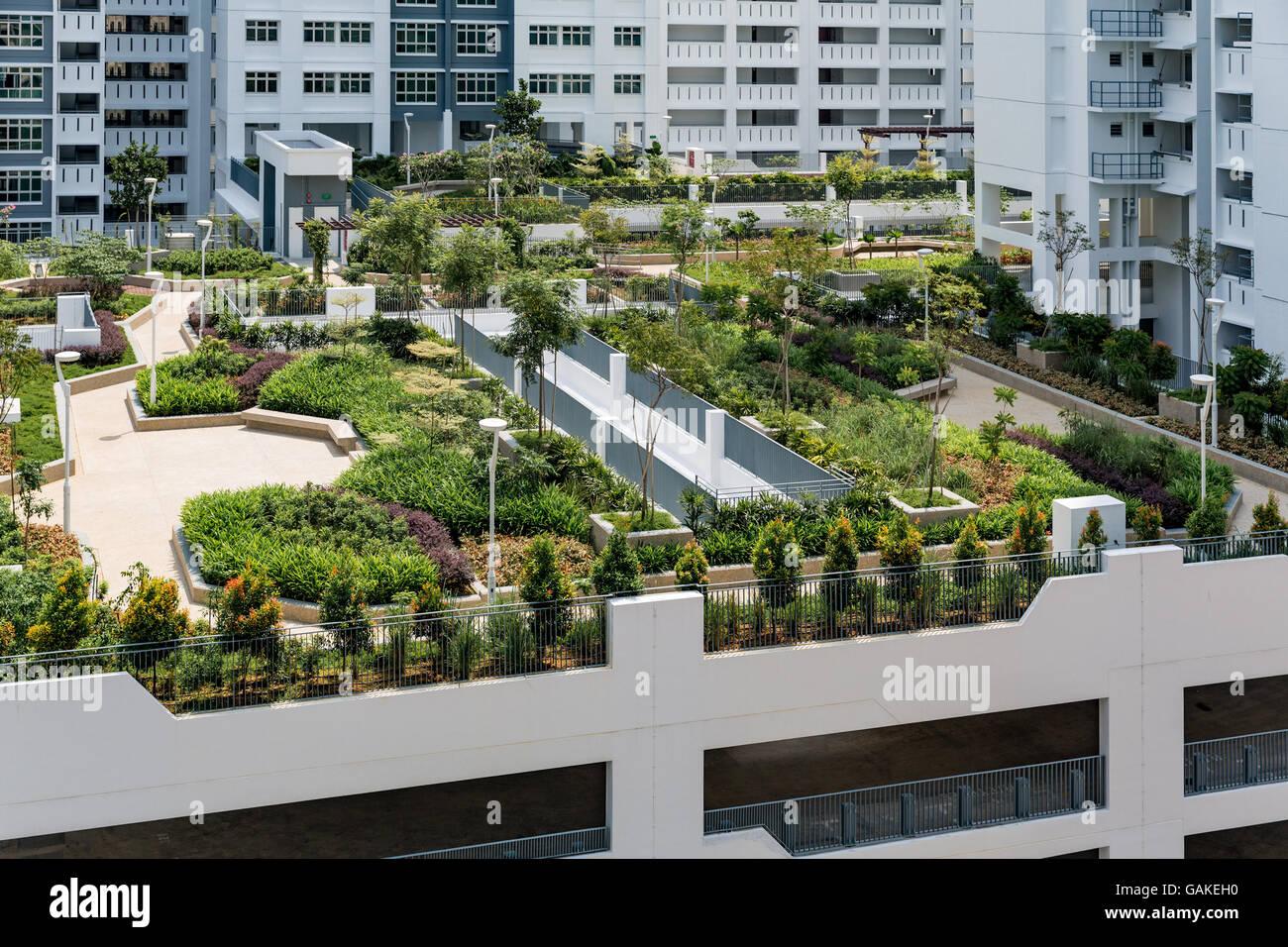 Roof Top Garden Above Car Park In New Singapore Public Housing Development Board Apartment Blocks