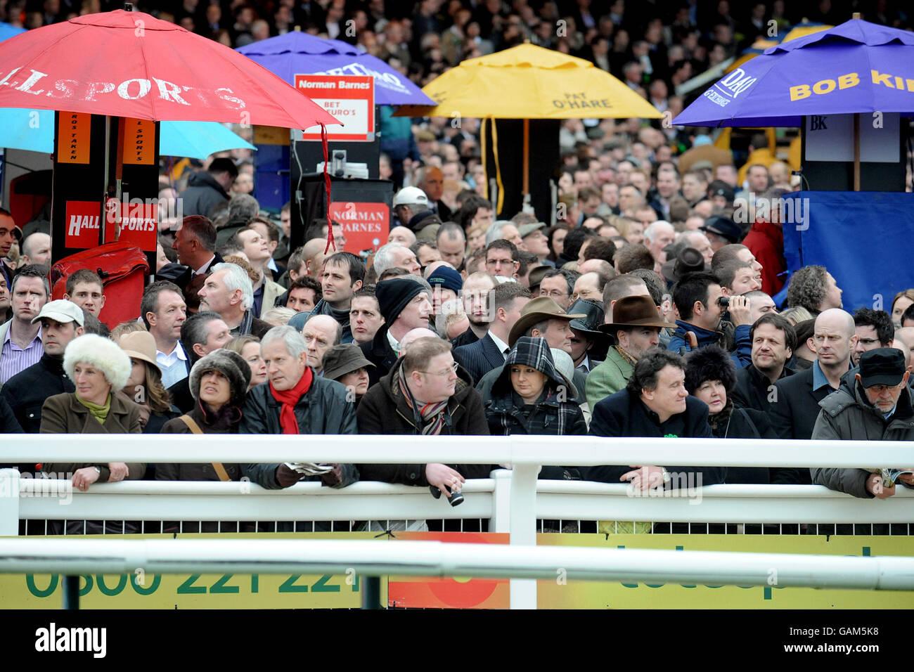 Horse Racing - Cheltenham Festival - Day Four - Cheltenham Racecourse Stock Photo