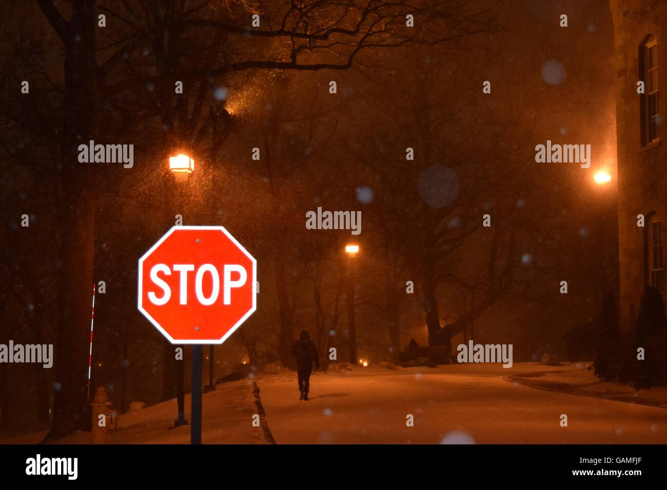 Stop Sign in the Snow Stock Photo