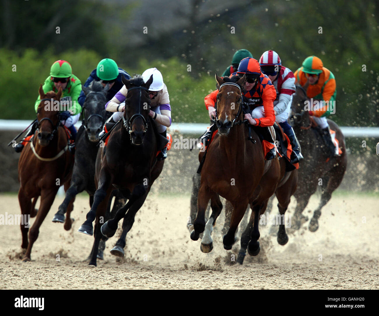 Horse racing invitation only evening great leighs stock photo horse racing invitation only evening great leighs stopboris Choice Image